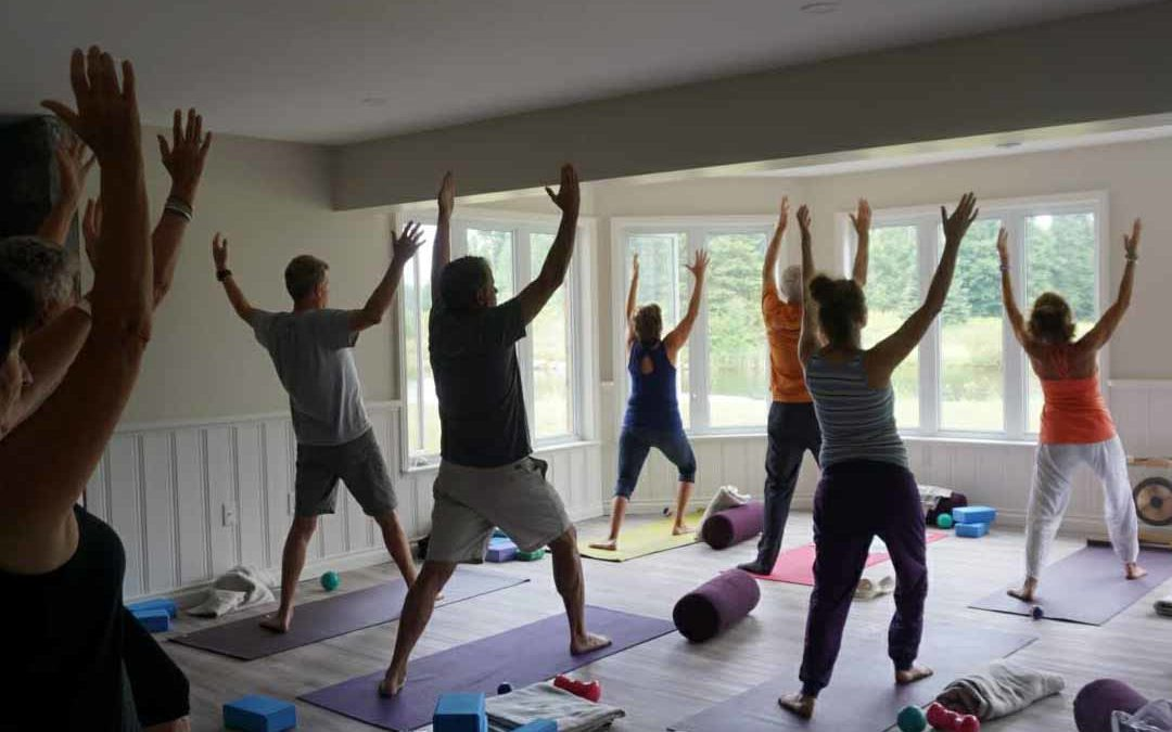 What is Yoga? by Dianne Levine