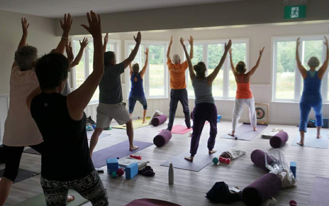 October 27 – 10am – Community Therapeutic Yoga – Gentle Movement and Breathing with Dianne Levine